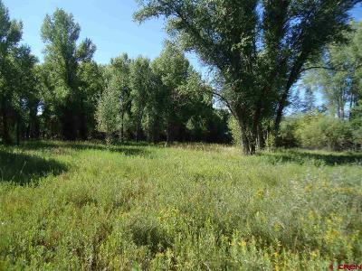 Gunnison County Residential Lots & Land For Sale: 324 Rainbow Acres Lane
