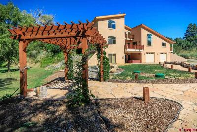 Pagosa Springs Single Family Home For Sale: 164 Jones Bend Court
