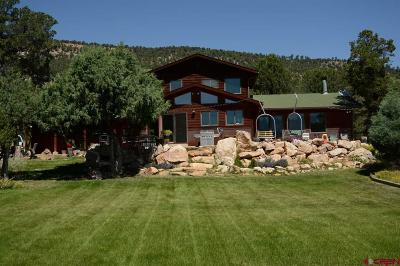 Ridgway Single Family Home For Sale: 3030 Pleasant Point Drive