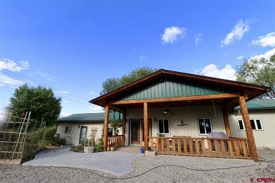Hotchkiss, Crawford, Paonia Single Family Home For Sale: 31867 L Road