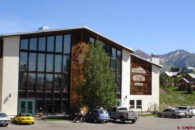 Mt. Crested Butte CO Condo/Townhouse NEW: $220,000