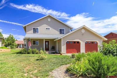 Pagosa Springs Single Family Home For Sale: 163 Woodsman Drive