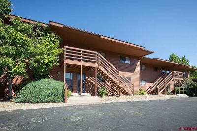 Condo/Townhouse NEW: 551 Animas View Drive #9
