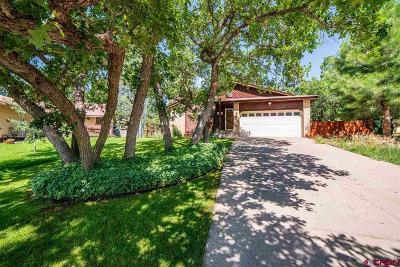 Durango Single Family Home UC/Contingent/Call LB: 33 Cedar
