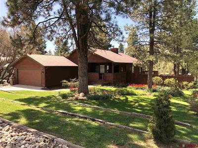 Durango Single Family Home For Sale: 96 Cedar Drive