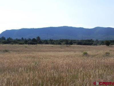 Hesperus Residential Lots & Land For Sale: 9181 C R 141