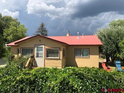 La Plata County Single Family Home For Sale: 297 North Street