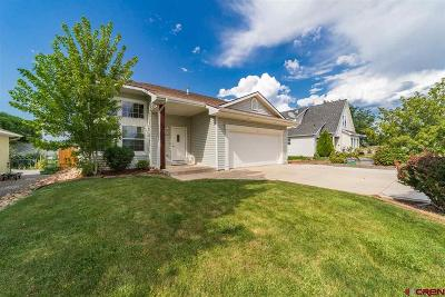 Montrose Single Family Home NEW: 2051 Cherry Street