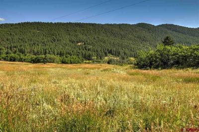 Durango Residential Lots & Land For Sale: 1212 Sunrise
