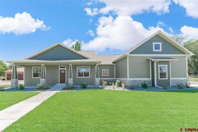 Montrose Single Family Home For Sale: 63574 Lake Shore Drive