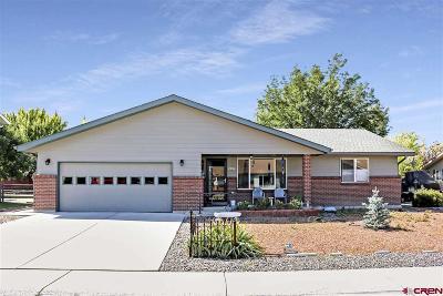 Montrose Single Family Home NEW: 2034 Princeton Way