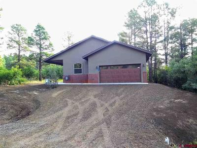 Pagosa Springs Single Family Home For Sale: 536 Dutton Drive
