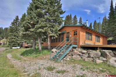 Cedaredge Single Family Home For Sale: 21675 Baron Lake Drive