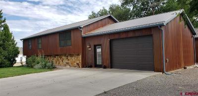 Montrose Single Family Home NEW: 735 S Park Avenue