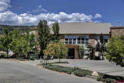Durango Condo/Townhouse UC/Contingent/Call LB: 35 Sunshine Court #3