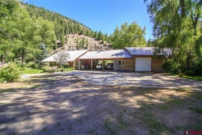 Pagosa Springs Single Family Home For Sale: 3600 County Road 335