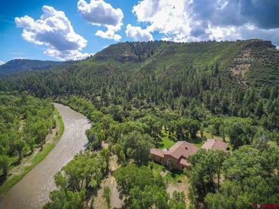 Pagosa Springs Single Family Home For Sale: 19894 County Road 500