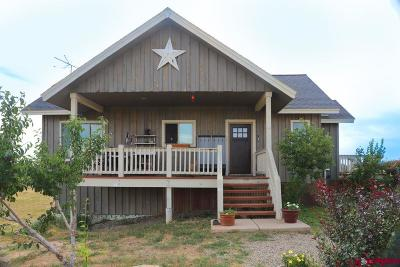 Mancos Single Family Home For Sale: 33624 Road M