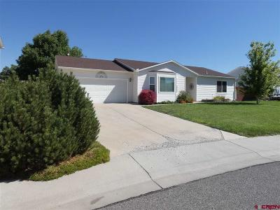 Montrose Single Family Home UC/Contingent/Call LB: 1830 Biron Road