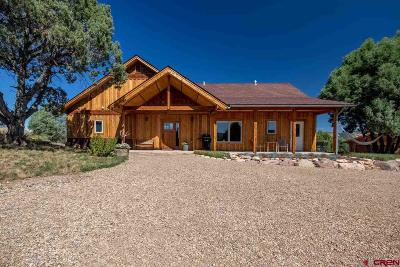 Pagosa Springs Single Family Home For Sale: 492 S Rockcliff Circle