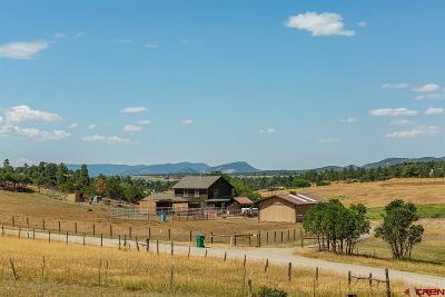 Durango Single Family Home For Sale: 166 Enderle Lane