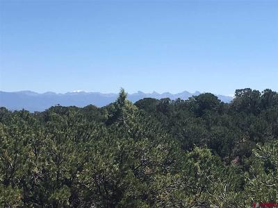 Ridgway Residential Lots & Land For Sale: Bible Camp Road