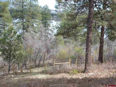 Mancos Residential Lots & Land For Sale: 13310 Road 41.9