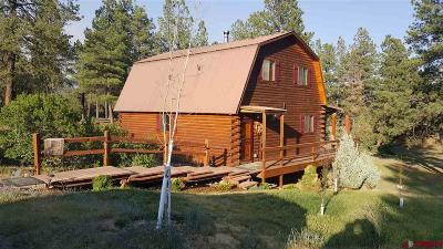 Pagosa Springs Single Family Home For Sale: 300 Whispering Wood Drive