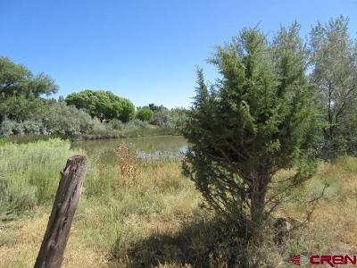 Dolores Residential Lots & Land For Sale: 28950 Road N