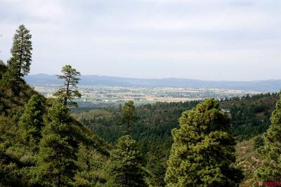 Durango Residential Lots & Land For Sale: 3976 Mira Sol Drive