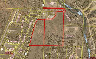 Durango Residential Lots & Land For Sale: Cr 213