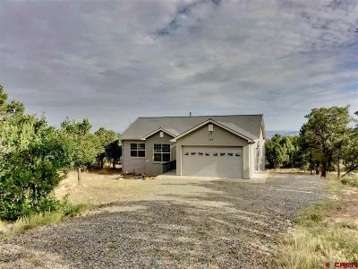 Ridgway Single Family Home For Sale: 151 Oak Road