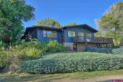 Paonia Single Family Home For Sale: 16041 Stevens Gulch Road