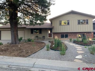 Durango Single Family Home For Sale: 2610 Arroyo Drive