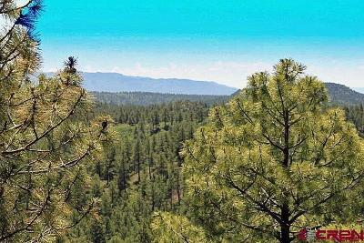 Durango Residential Lots & Land For Sale: Cadillac Canyon