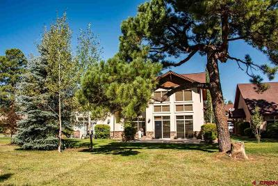 Pagosa Springs Condo/Townhouse For Sale: 1135 Park Ave #916