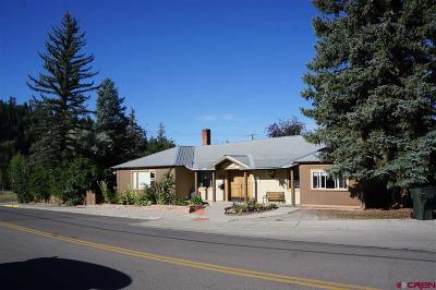 Pagosa Springs Single Family Home For Sale: 175 N 1st Street