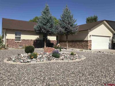 Montrose Single Family Home UC/Contingent/Call LB: 1880 Biron Road
