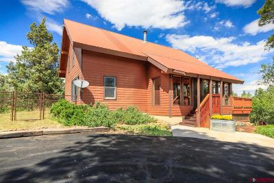 Pagosa Springs Single Family Home For Auction: 2066 Meadows Drive