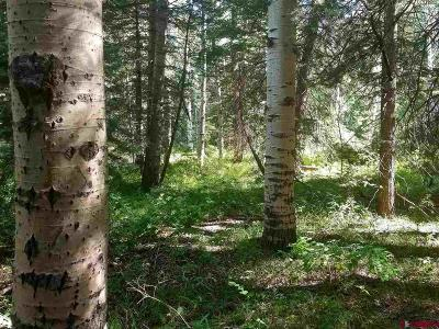 Durango Residential Lots & Land For Sale: 341 Grizzly Ln