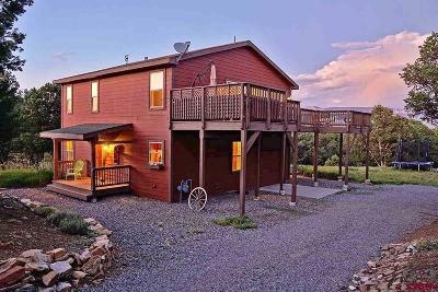 Ridgway Single Family Home For Sale: 281 Oak Road