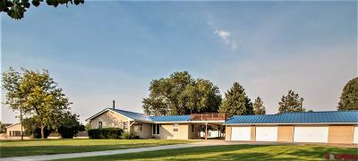 Montrose Single Family Home For Sale: 62537 Jig Road