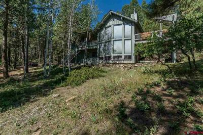 Pagosa Springs Single Family Home UC/Contingent/Call LB: 193 Gary Place
