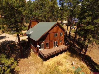 La Plata County Single Family Home For Sale: 148 Pine Cone Drive