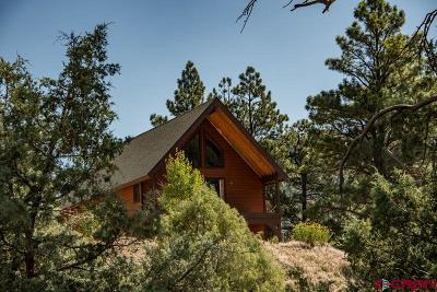 Pagosa Springs Single Family Home For Sale: 4391 County Road 335