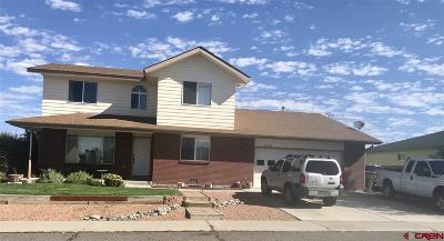 Montrose Single Family Home For Sale: 2049 James Street