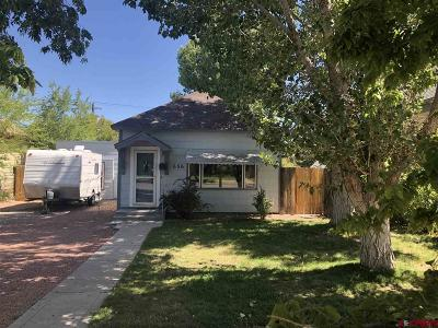 Delta Single Family Home For Sale: 656 Palmer Street