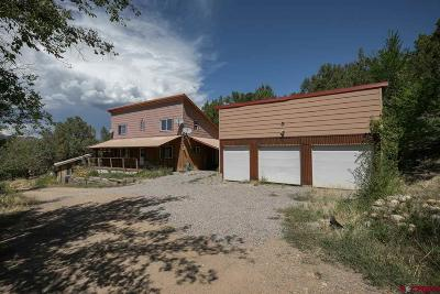 Durango Single Family Home For Sale: 862 Rainbow