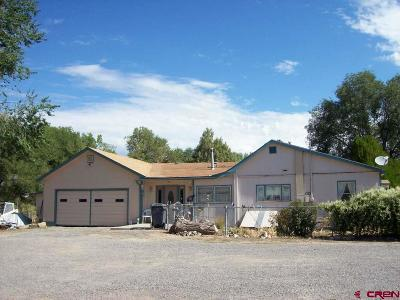 Eckert Single Family Home For Sale: 13693 Highway 65