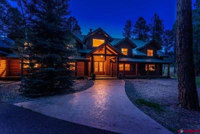 Pagosa Springs Single Family Home For Sale: 8380 E Us Hwy 160